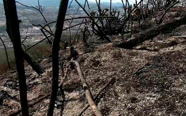 Continúan las labores de sofocación en el cerro Casitagua