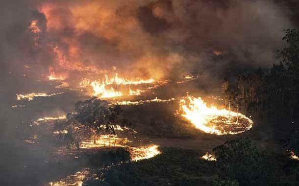 Los daños por los incendios en Australia superan los 485 millones de dólares
