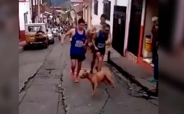 Atleta colombiano no sale de la polémica por agresión a un animal