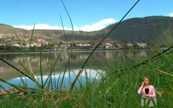La laguna de Yahuarcocha en emergencia por contaminación