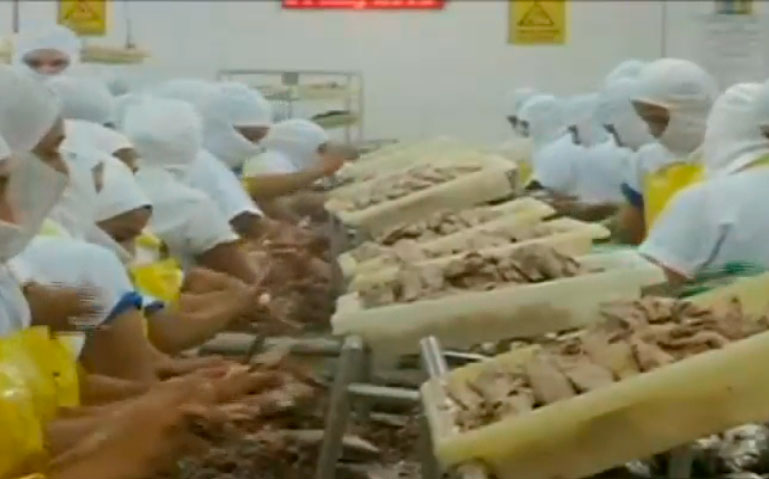 Con la eliminación de aranceles aumentaría envío de productos a EE.UU.