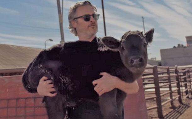 Joaquín Phoenix salva a una vaca y a su cría recién nacida