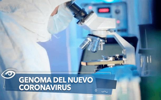 GENOMA DEL NUEVO CORONAVIRUS