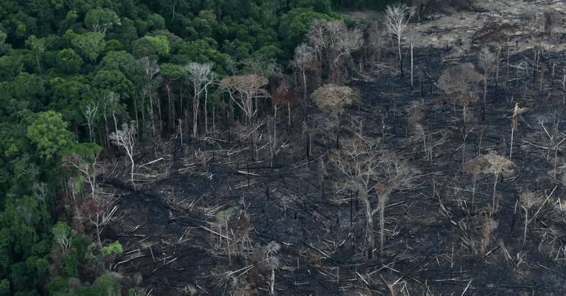 La deforestación en la Amazonía de Brasil se agravó en abril y no da señales de deternese