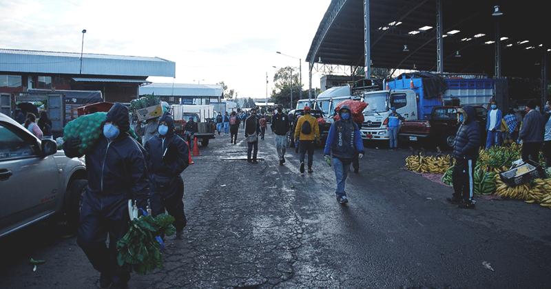 Ciudadanos de Quito no acatan las disposiciones de las autoridades