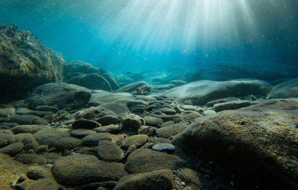 Graban un extraño fenómeno en el fondo del mar de Australia