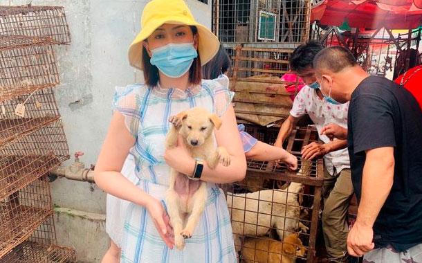 Cuestionado festival de carne de perro en China