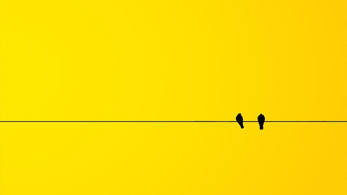 El encanto de la música minimalista
