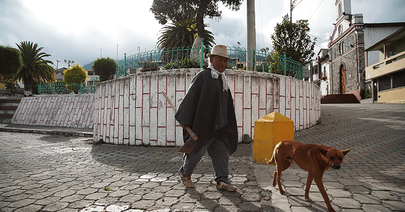 Comunidades le apuestan a la medicina ancestral para enfrentar la pandemia