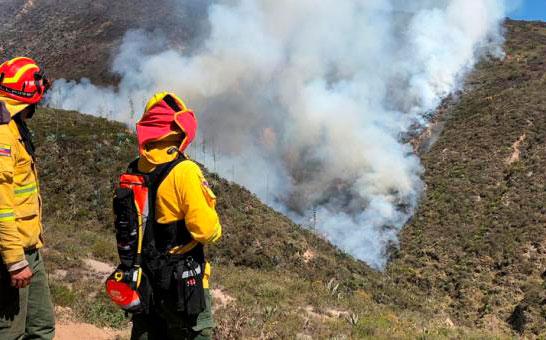Desde enero hasta agosto, 538 incendios forestales se registraron en Ecuador