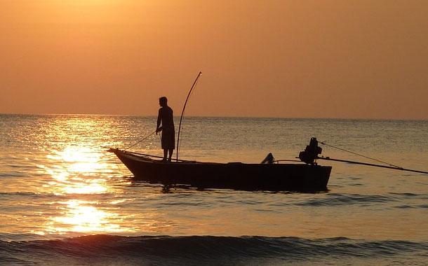 Pescador muere al ser golpeado por un enorme pez en Australia
