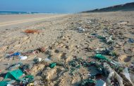 Los cubrebocas de la pandemia llegan a las aguas de Cancún