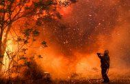 Incendios no dan tregua a la provincia argentina de Córdoba