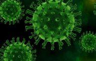 141 339 casos confirmados de coronavirus en Ecuador