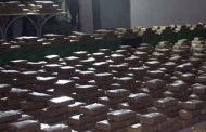 Dos laboratorios de droga destruidos en los últimos días en Nariño