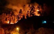 Incendios forestales arrasan con la vegetación en Cuenca